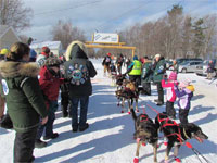 Grand Marais Dogsled